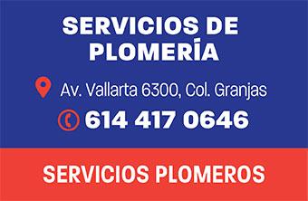 CH203_HOG_SERVICIOS_PLOM
