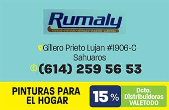 CH263_HOG_RUMALY-2