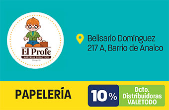 DG331_PAP_EL_PROFE-1
