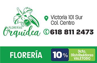 DG441_VAR_FloreriaOrquidea-1