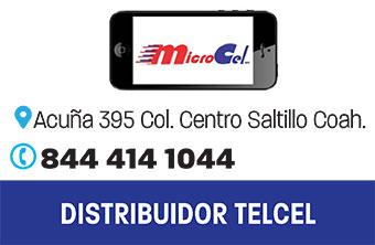 SALT163_TEC_MINICEL