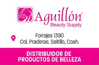 SALT37_BYA_Aguillon_Supply