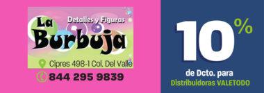SALT397_VAR_FLK_DETALLESYFIGURAS_LA_BURBUJA-2