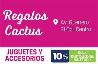 SP98_VAR_REGALOS_CACTUS-2