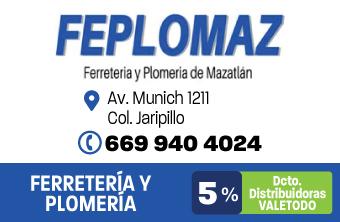 MZT172_FER_FEPLOMAZ_APP