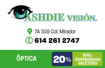 CH413_SAL_ASHDIE_VISION_APP