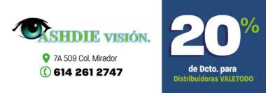 CH413_SAL_ASHDIE_VISION_DCTO