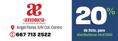 CLN8_CAL_ANDREA_DCTO