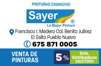DG609_FER_SAYER_PINTURAS_CAMACHO_APP