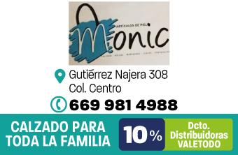 MZT230_CAL_ARTICULOS_DE_PIEL_MONIC_APP