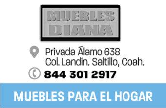 SALT183_HOG_MUEBLESDIANA_APP