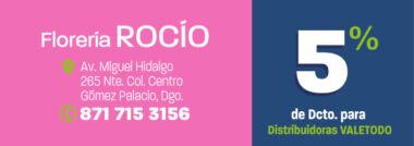 LAG722_VAR_FLORERIA_ROCIO_DCTO